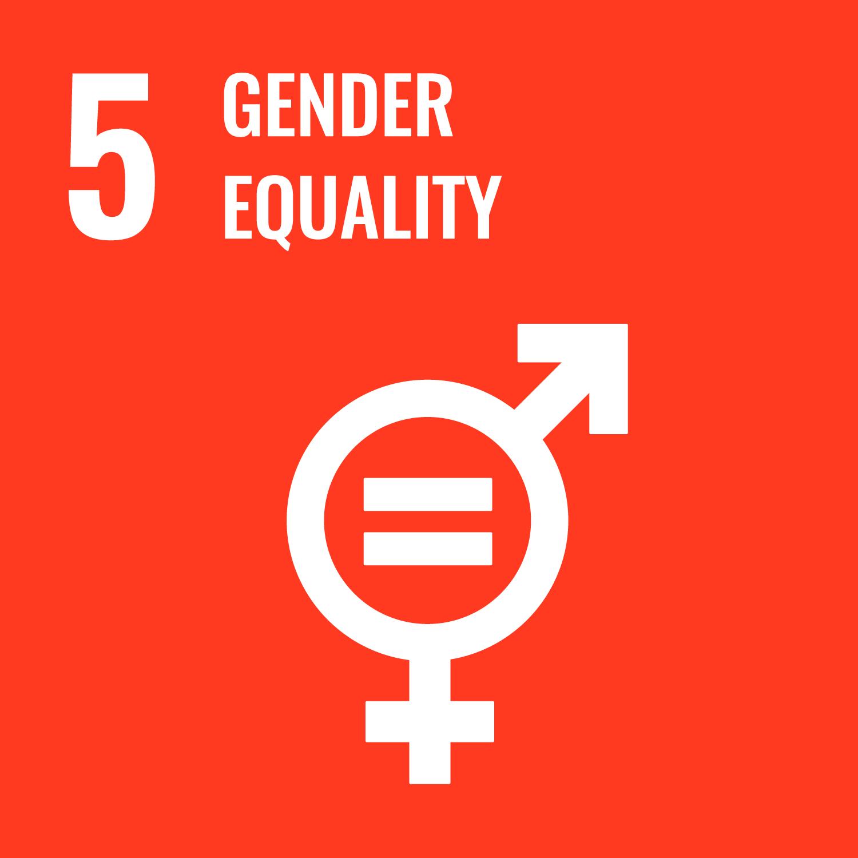 UN SDG GOAL 5 GENDER EQUALITY