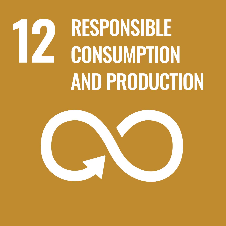 UN SDG GOAL 12 RESPONSIBLE CONSUMPTION AND PRODUCTION