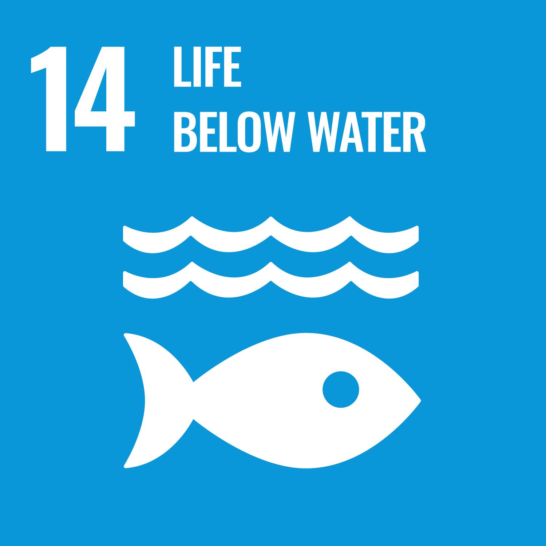 UN SDG GOAL 14 LIFE BELOW WATER